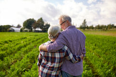 Happy senior couple at summer farm Royalty Free Stock Image