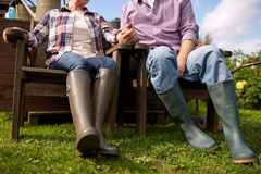 Happy senior couple at summer farm Stock Images