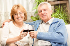 Happy senior couple toasting their anniversary royalty free stock image