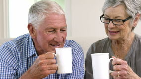 Happy senior couple toasting together stock video