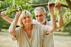 Happy senior couple under a tree Royalty Free Stock Photo
