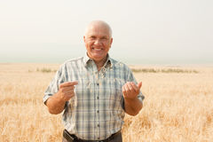 Happy senior farmer Royalty Free Stock Image