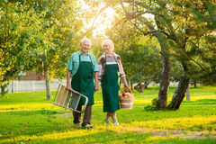 Happy senior gardeners. Royalty Free Stock Photography