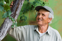 Happy senior looking at tree Stock Images