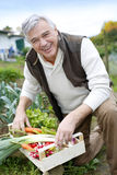 Happy senior man with basket full of fresh vegetables Stock Photos