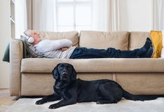 A happy senior man lying on a sofa indoors with a pet dog at home, listening to music. A happy senior man lying on a sofa indoors with a pet dog at home stock photo