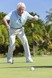 Happy Senior Man Putting Playing Golf. Happy senior man playing golf putting and celebrating a successful shot royalty free stock photo