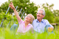 Happy senior man and woman in vineyard Stock Photo