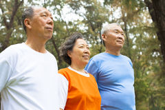 Happy senior sibling standing a row in park Royalty Free Stock Images