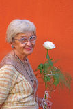 Happy senior woman. Portrait of a happy senior woman with a white rose over an orange wall Royalty Free Stock Photos