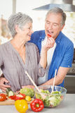 Happy senior woman feeding husband while standing at counter Royalty Free Stock Photography