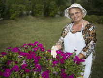 Happy senior woman in the garden. Showing colorful flowers Stock Photography