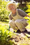 Happy senior woman gardening Stock Image