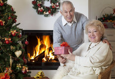 Happy senior woman getting Christmas present Royalty Free Stock Photography