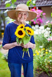 Happy Senior Woman Holding Pretty Sunflowers Stock Image