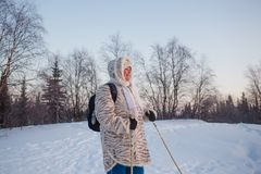 Happy senior woman looking to winter sunset in forest. Nordic walking activity.  Stock Photography