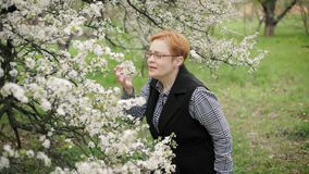 Happy senior woman looks at and smells cherry tree blossom. Slow motion. Happy ashionable senior woman in glasses looks at and smells cherry tree blossom and stock video footage