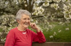 Happy senior woman outdoor portrait. In spring stock images