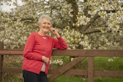 Happy Senior woman outdoors in Spring. Taken with copy space stock images