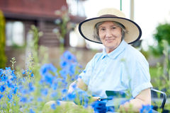 Happy Senior Woman Planting Flowers in Garden. Portrait of nice old woman wearing straw hat  posing in flower garden, smiling at camera while working Stock Photo