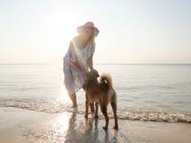 Free Happy Senior Woman Playing Wih Dog At Seashore In Sunlight Royalty Free Stock Images - 183281799