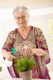 Happy senior woman watering plant Royalty Free Stock Photos