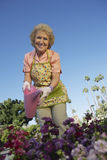 Happy Senior Woman Watering Plants Royalty Free Stock Image
