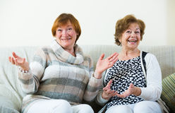 Happy senior women posing indoors and laughing. Happy mature women sitting on sofa, chatting and laughing stock photo