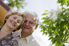 Happy seniors - 42 years in love. Smiling senior couple in a blossoming garden royalty free stock images