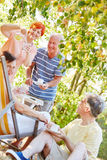 Happy seniors in the garden. In summer drinking coffee royalty free stock photography