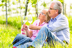 Happy seniors having picnic drinking wine Stock Photo