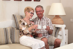 Happy seniors at home Stock Photo