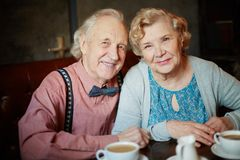 Happy seniors Stock Photography