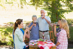Happy seniors toasting with their family. On a sunny day stock images