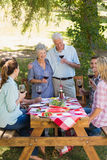 Happy seniors toasting with their family. On a sunny day stock photo