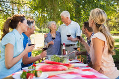 Happy seniors toasting with their family. On a sunny day royalty free stock photo