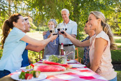 Happy seniors toasting with their family. On a sunny day royalty free stock photography