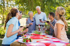 Happy seniors toasting with their family. On a sunny day royalty free stock images