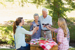Happy seniors toasting with their family Royalty Free Stock Photo