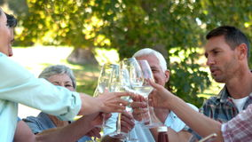 Happy seniors toasting with their family stock video