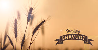 Happy Shavuot Card Stock Image