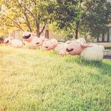 Happy sheep statue Stock Photos