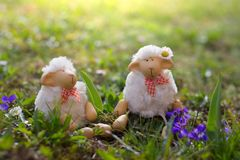 Happy sheep toy looking for Easter royalty free stock photography
