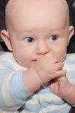 Happy Shy Baby Royalty Free Stock Image