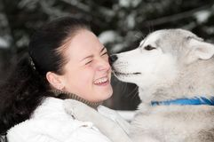 Happy siberian husky owner with dog royalty free stock image