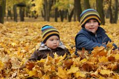 Happy sibling, two brothers in autumn leaves Stock Photos