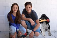 Happy siblings. Brother and sister and her little poodle dog stock images