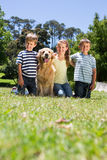 Happy siblings with their dog Stock Images