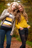 Happy sisters in the autumn Stock Photography