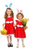 Happy sisters with bunny ears and easter eggs. Happy two sisters with bunny ears holding hands and holding basket with easter eggs and daffodils flower isolated Stock Image